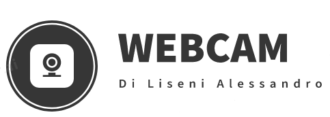 WEBCAM di Liseni Alessandro Toner Cartucce Assistenza Cellulari DHL ServicePoint  Catania